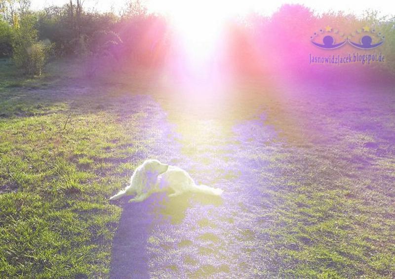 Energia Anielska - Jezus - duchowy uzdrowiciel JasnowidzJacek.BlogSpot.de