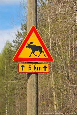 Finnland Skandinavien Elch Straßenschild Frühling