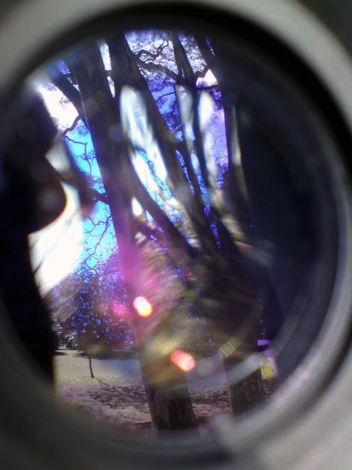 Reflexos em meu viewfinder...