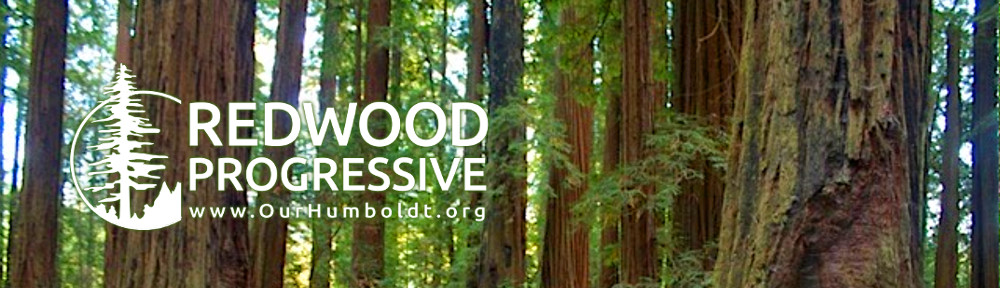 Redwood Progressive | Alliance For Ethical Business