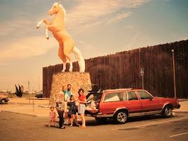 Piper's Pontiac Wagon!