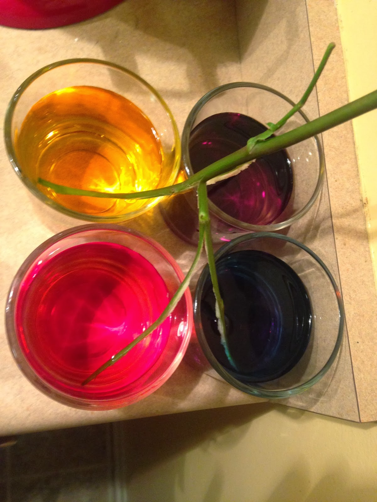 How To, How Hard, and How Much: Dyed Roses = Pinterest Fail