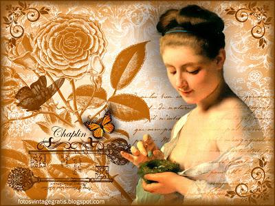 fondo vintage con mariposas, dama y nido