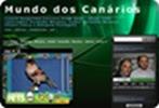 Criadores de Arlequines Portugueses