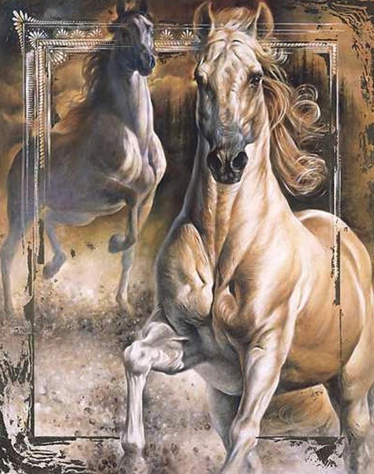 arabian horse head clip art