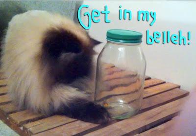 Diy-Butterfly-Jar