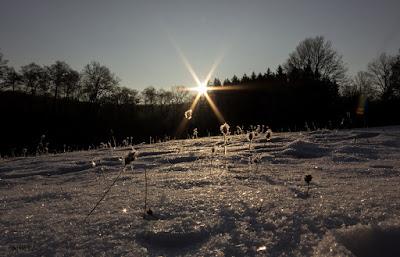 Napkelte fagyban, Börzsöny