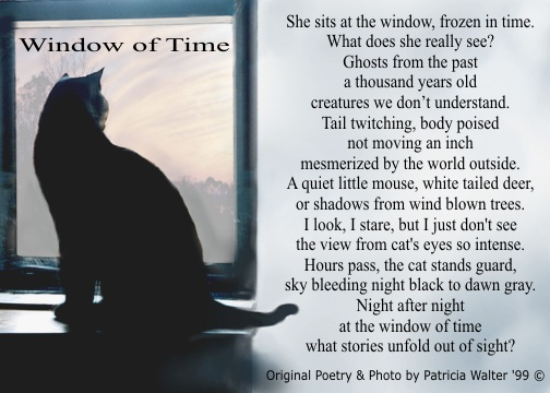 Funny Poem Beautiful Sounds From The Inside Of Cat