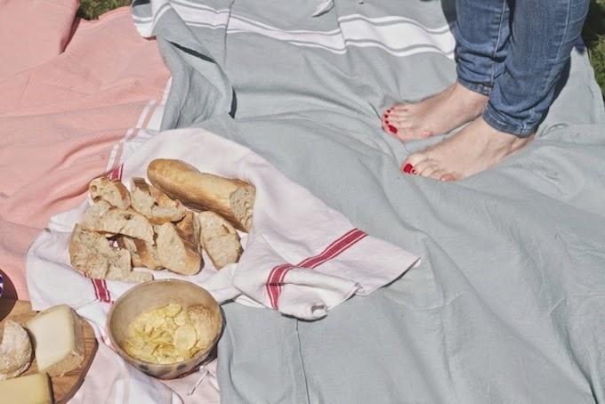 picnic en la provenza