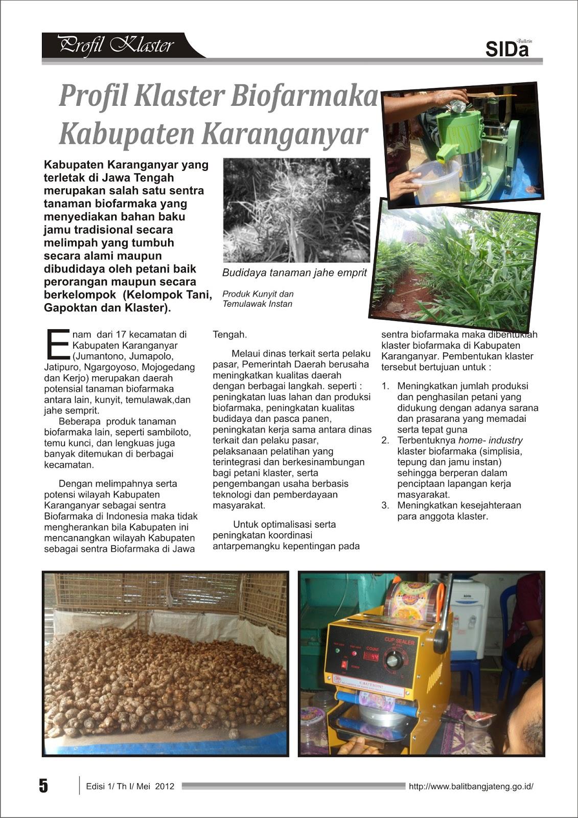 Klaster Umkm Produk Ukm Bumn Batik Parang Kembang Diposting 2nd April 2013 Oleh
