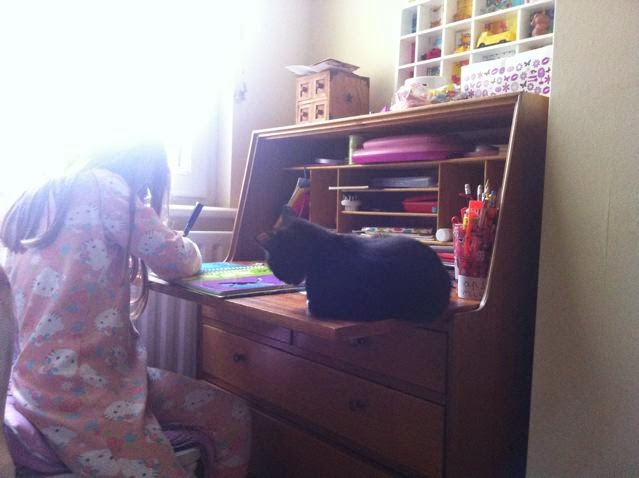 Cat on vintage bureau