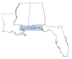 Gulf Coast I-10 region