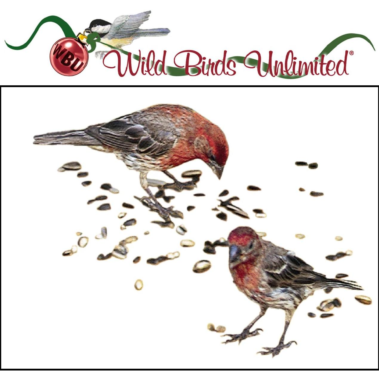 wild birds unlimited the tradition of feeding the birds at
