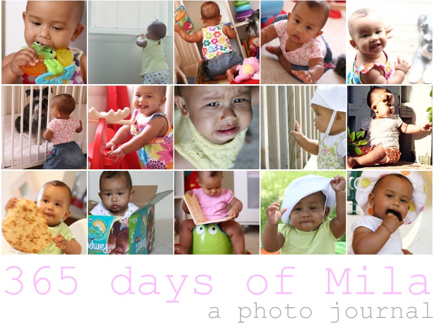 365 days of Mila