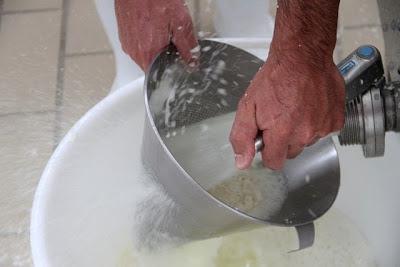 Desuerando el queso Cantagrullas. Blog Esteban Capdevila