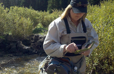 Fly Fishing with Friends River Damsel