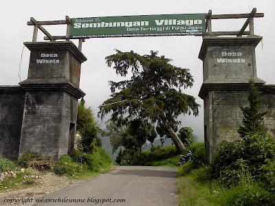 Desa Sembungan Desa Tertinggi di Jawa