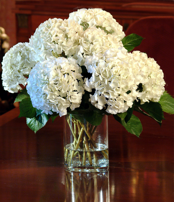 Wedding Flowers With Hydrangea : Wedding flowers white hydrangeas