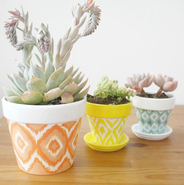 Macetas bonitas para cactus | Mi Casa es Feng
