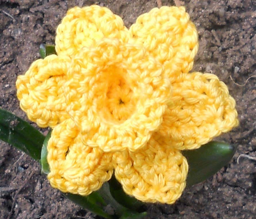 Knitshop Crochet A Daffodil For Marie Curie Cancer Care