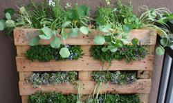 construccin de un huerto o unas jardineras con palets