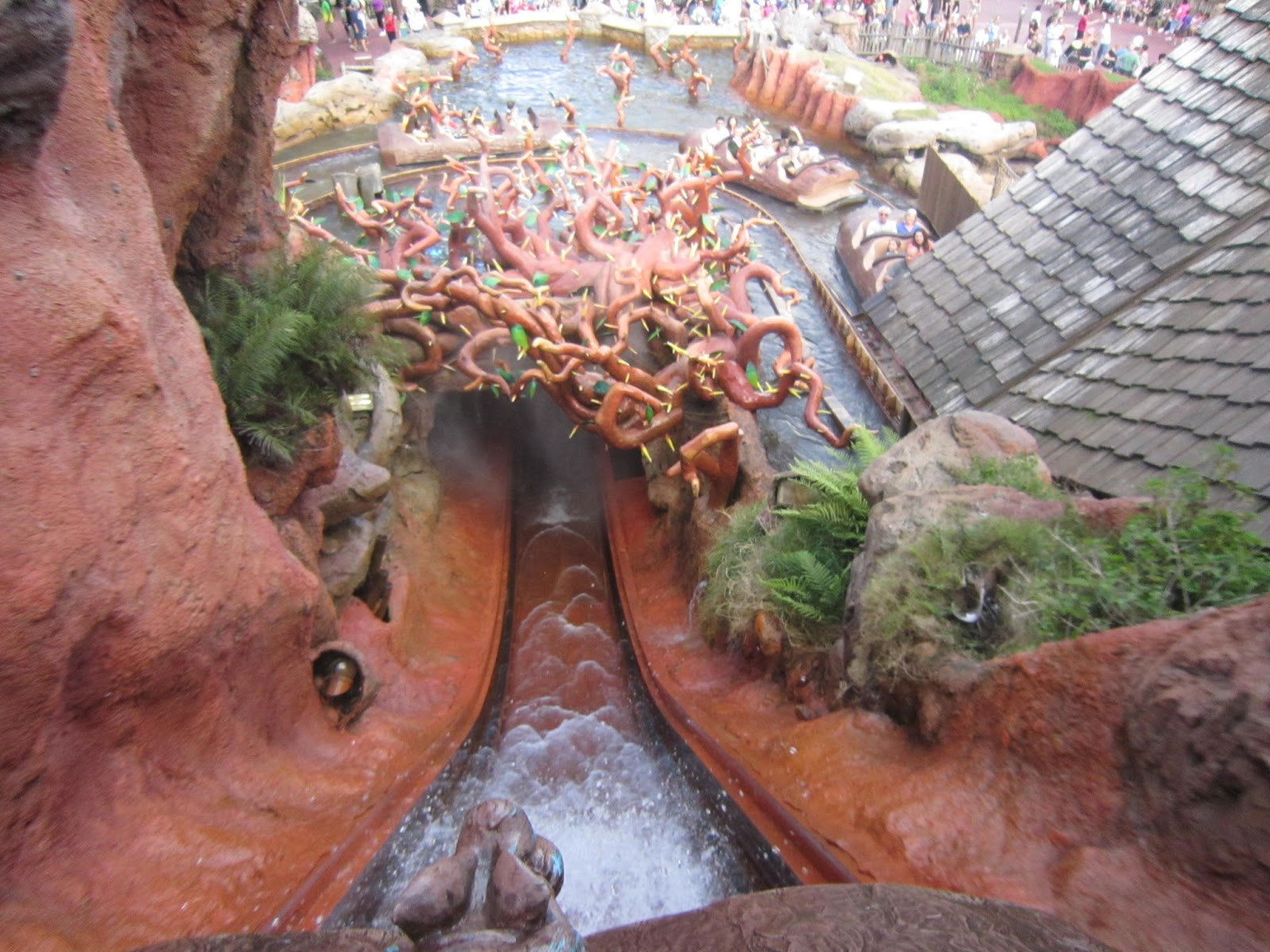 ride, water, Walt Disney World, Magic Kingdom