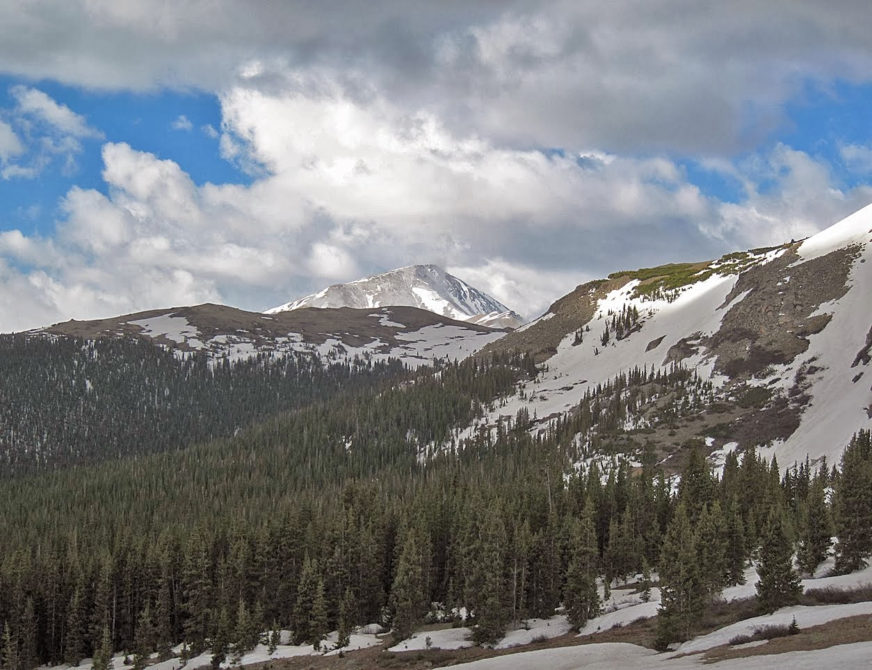 Mount Elbert in June