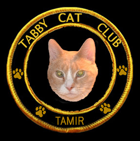 Tamir&#39;s Badge