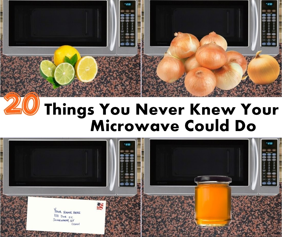 20 things you never knew your microwave could do handy diy - Things never put microwave ...