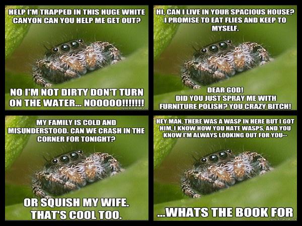 pizap.com13486252724371 spiders are so misunderstood!,Misunderstood Spider Meme