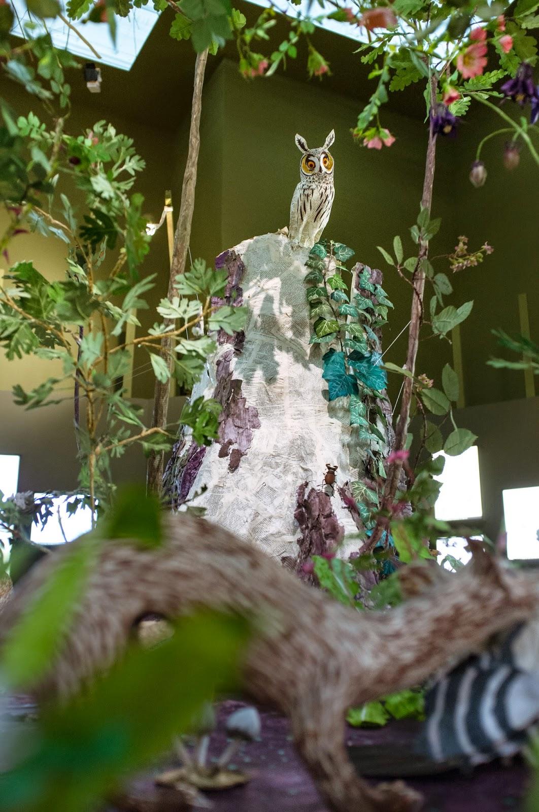 Exposition: Fleurs en campagne à Bagatelle, Anne-Lise Koehler