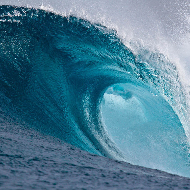 The Best Ocean Wave - Nature Photos