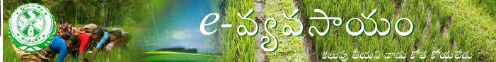 AP MP AEO Recruitment 2015 Apply Online for 6354 Posts