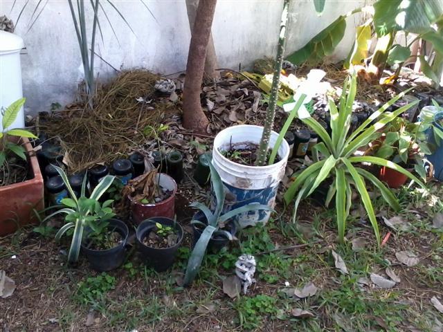 Macetas y jardineras en base a materiales reciclados - Ideas para jardineras ...