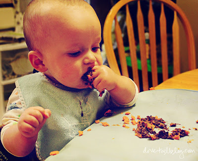 Some Baby-Approved Recipes {Homemade Baby Food}