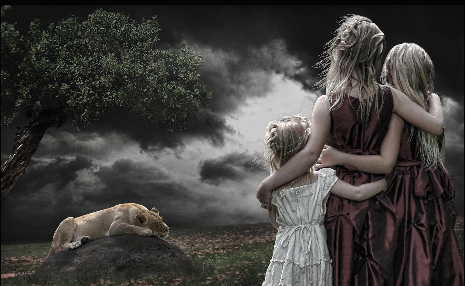 http://4.bp.blogspot.com/-HvZBSsyG4pw/UQQxu0MfpvI/AAAAAAAACxA/OEn2j_QKIOo/s1600/wallpaper-young-girls-watching-a-lion.jpg