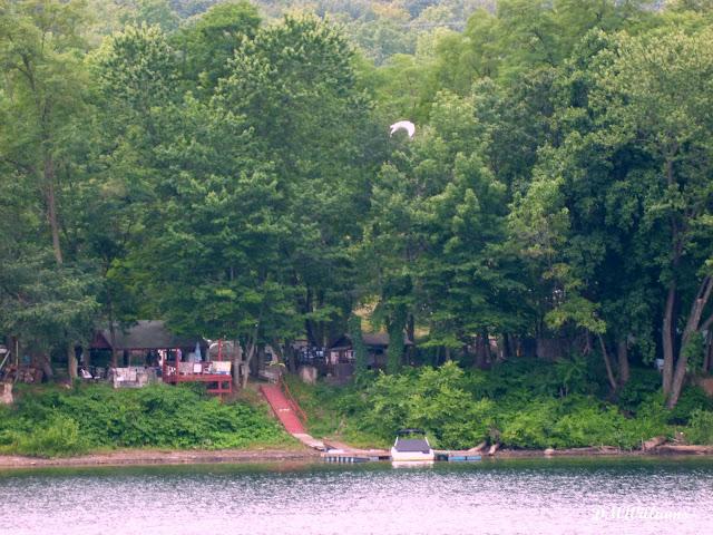Susquehanna River in Williamsport, PA
