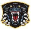 Nottingham Panthers Ice Hockey Team.