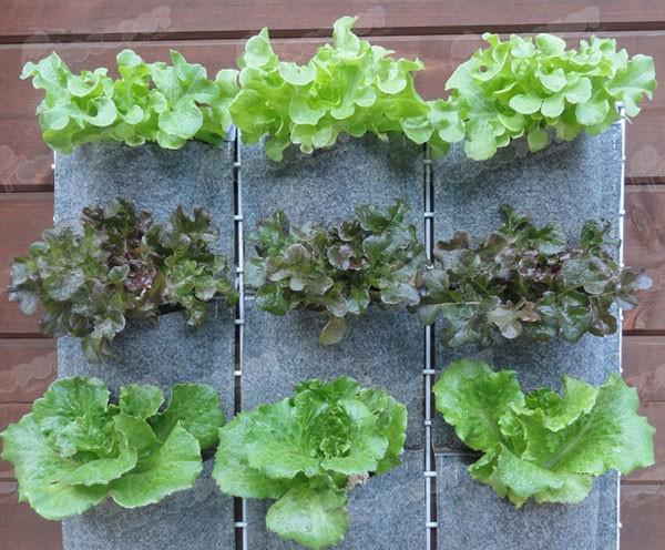 Huertos urbanos verticales jardines verticales y - Material para jardin vertical ...