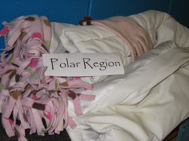 Polar Region Artifacts