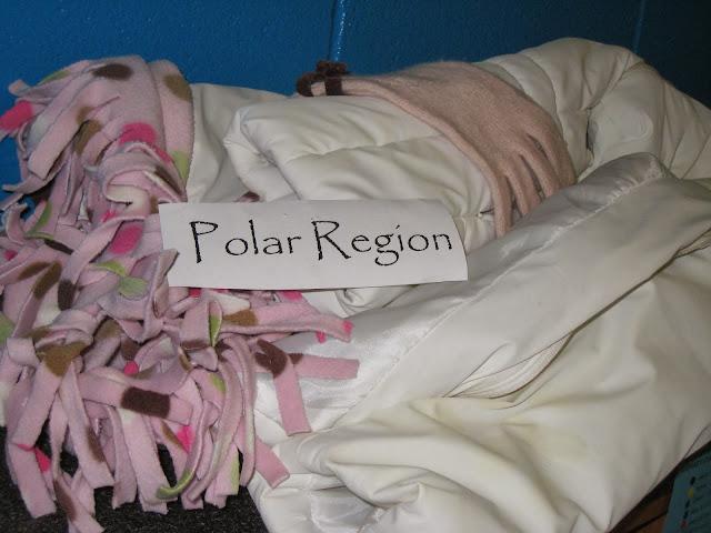 Polar Region Artifacts