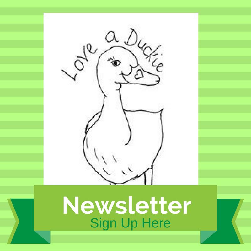 Follow my newsletter