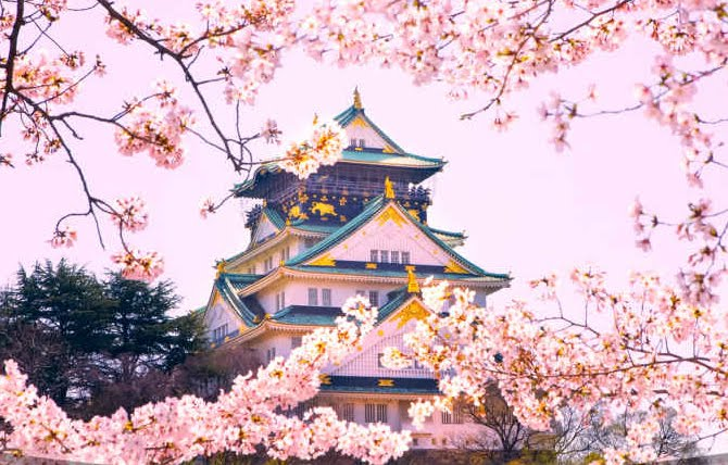 Japan Package Tour From Mumbai