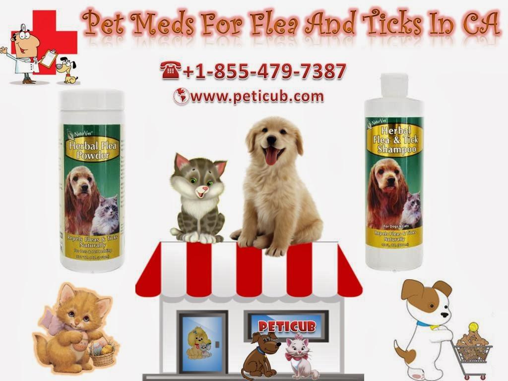 Pet S Health Supplements