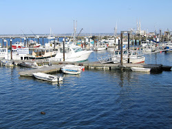 Public and Fishing Dock