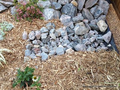 Rain garden dry creek bed