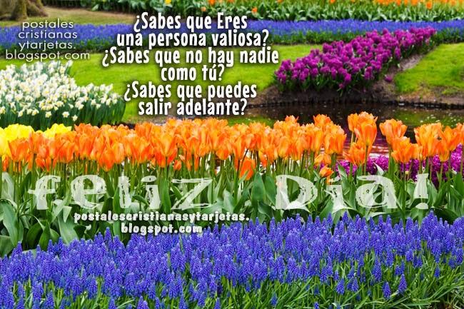 Eres una persona valiosa y única. Palabras positivas, reflexivas, pensamientos lindos para amigos del facebook, jardín flores precioso, feliz día, buenos días amigo, amiga. Buena autoestima.