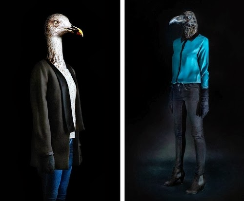 10-Raven and Seagull-Miguel-Vallinas-Segundas-Pieles-Second-Skins-Smartly-Dressed-Animals-www-designstack-co