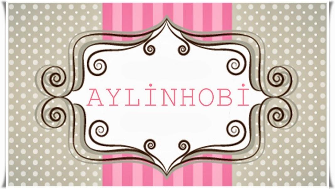 aylinhobi