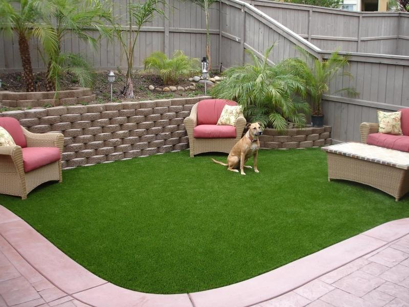 No Grass Backyard For Dogs : The 2 Minute Gardener Garden Elements  Field Turf (Artificial Grass)